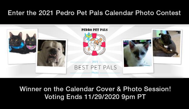 2021 PPP calendar photo contest