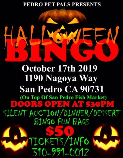 Pedro Pet Pals presents Halloween Bingo nigh