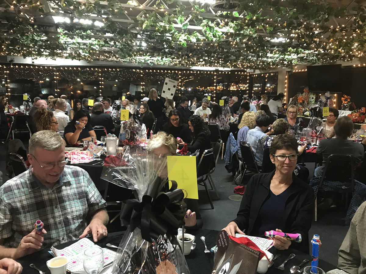 Pedro Pet Pals Bingo Night and Silent Auction fundraiser