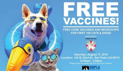 Free Vaccines for Cats & Dogs