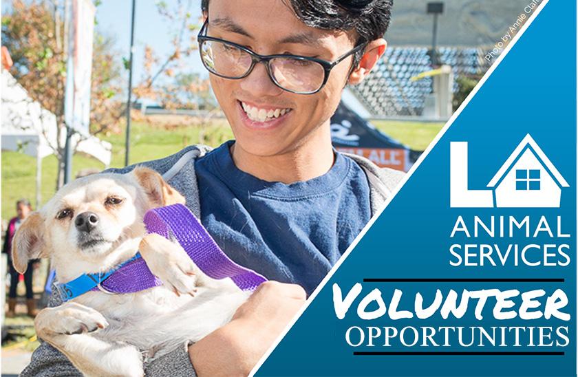 laanimalservice-volunteer-ppp3